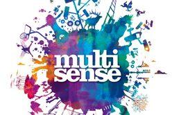 MultiSense Forum