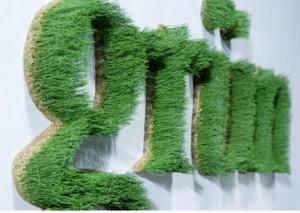"""Artikelbild für: """"Green Events"""" mal anders – die besondere Eventdekoration für einen grünen Auftritt!"""