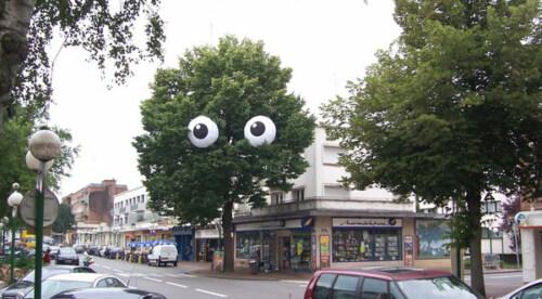 Artikelbild für: Bäume sind auch Lebenwesen – lustige Street Art