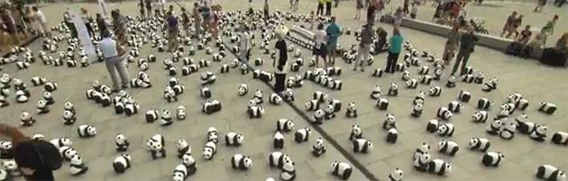 Artikelbild für: Pandas on Tour: WWF Roadshow mit Big Picture Faktor