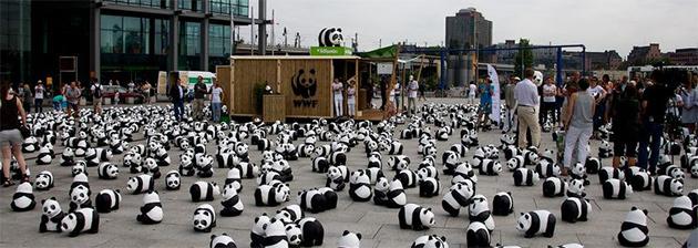 wwf-panda-tour