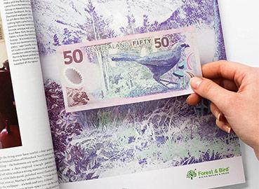 Artikelbild für: Marketing: kluge Spenden-Kampagne für Forest & Bird