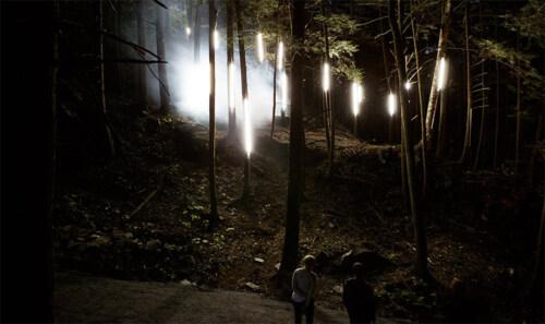 Artikelbild für: Foresta Lumina: multisensorische Installation im Wald – wenn Märchen & Geschichten real werden
