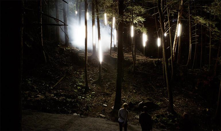 foresta-lumina-moment-factory