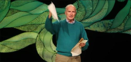 Artikelbild für: Nachhaltiges Handeln spielerisch vermitteln: Wie wir weniger Papiertücher verbrauchen