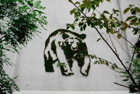 Artikelbild für: Eventdesign & Eventdeko Ideen: natürliche Graffitis und Wandgestaltungen aus Moos
