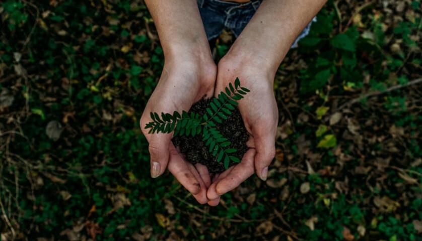 """Artikelbild für: Warum """"Nachhaltiges Veranstaltungsmanagement mit Strategie"""" hilfreich ist – Buch-Tipp"""