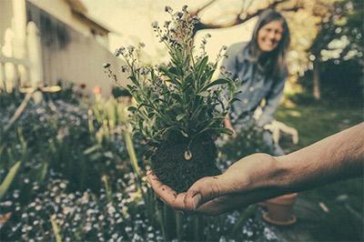 Artikelbild für: Blumige Give Aways: Seedbombs selber machen