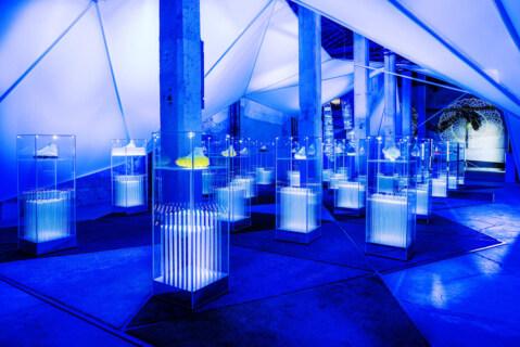 """Artikelbild für: 10 Designer und 16.000 Schuhkartons: Nike Ausstellung """"The Nature of Motion"""""""