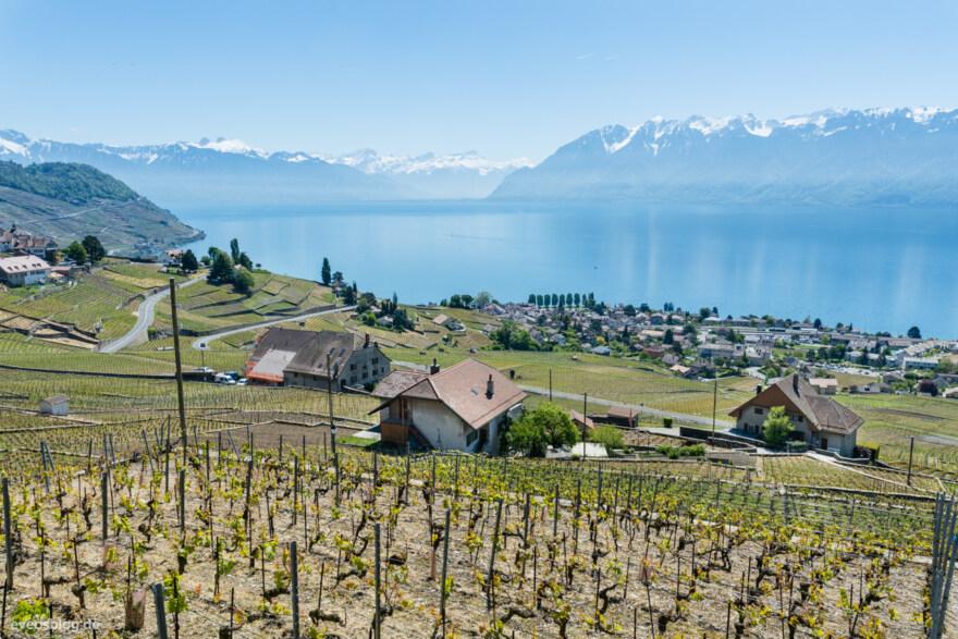 Artikelbild für: Fotos & Eindrücke aus Lausanne – Schweizer Eventdestination am Genfer See