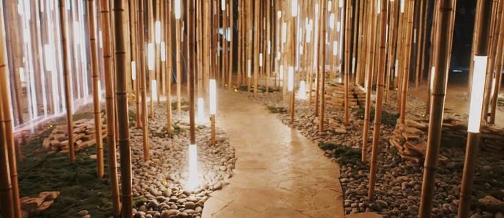 Artikelbild für: Lexus Dome: Technologie und Natur als mystische Erlebniswelt