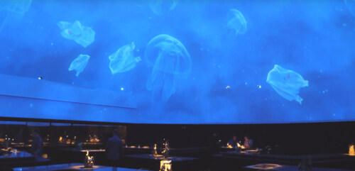 Artikelbild für: Restaurant-Erlebnis: Haute Cuisine, Raumdesign & politische Statements – Alchemist in Kopenhagen