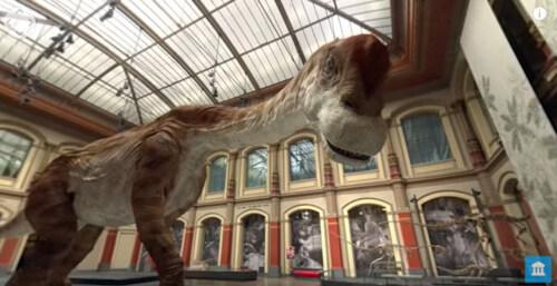 Artikelbild für: Virtual Reality Erlebnisse & Mehrwerte: Dinosaurier zum Leben erwecken