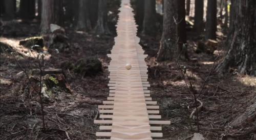 Artikelbild für: Markenerlebnis im Wald: Xylophon Kugelbahn als musikalische Installation